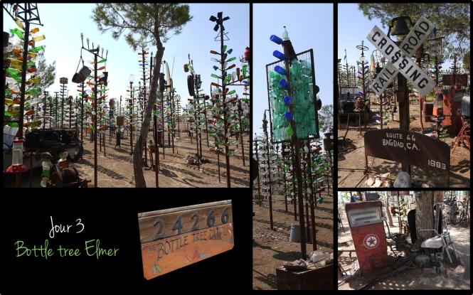 2013 - OA - J3 - Bottle tree elmer