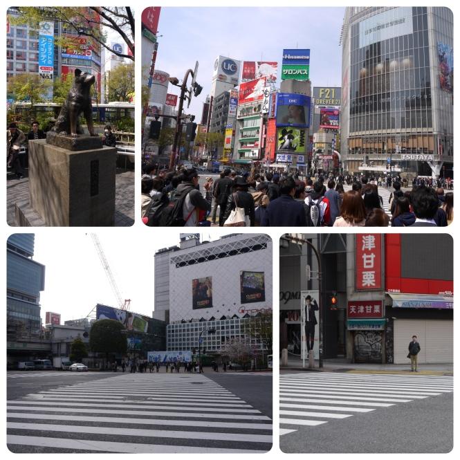 J12-Shibuya2
